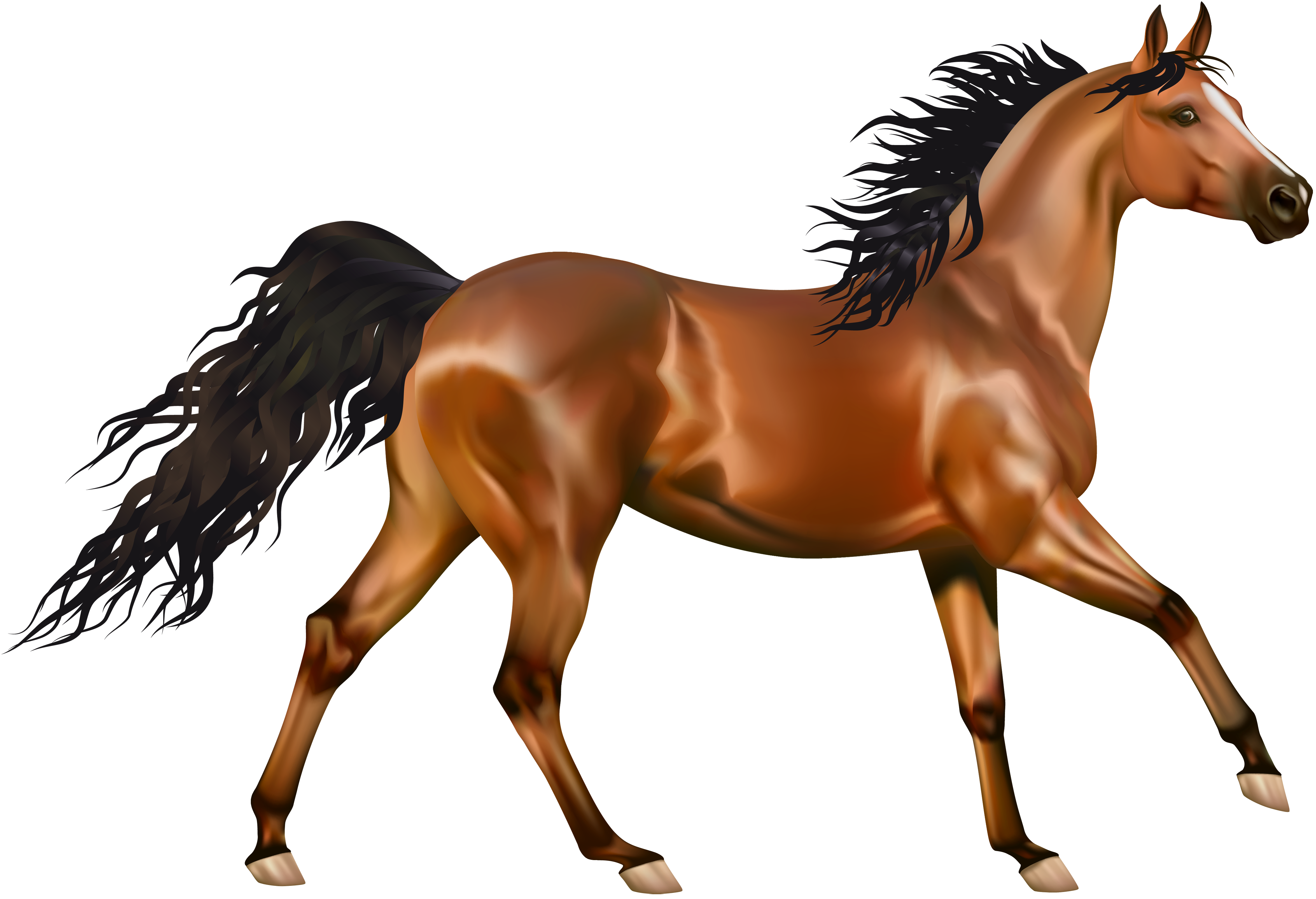 clipart picture of a horse - photo #48